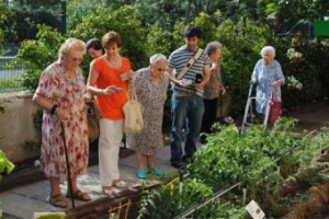 """III edición del concurso """"Decorando el Jardín"""" celebrado en las residencias de la Comunidad de Madrid"""